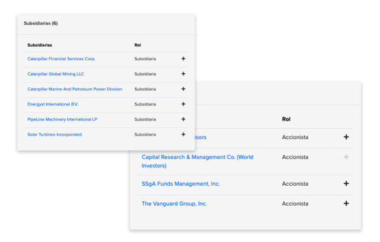 Subsidiarias y accionistas